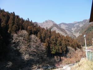 2011-0223 007