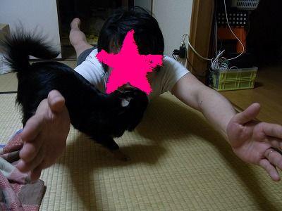 R0011386.jpg