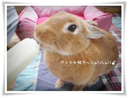 いなり喜10