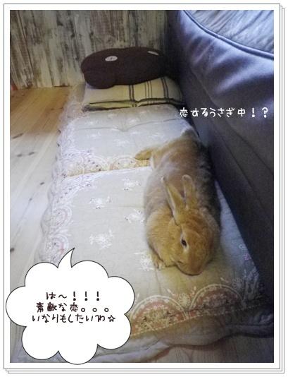 いなり喜14