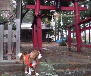P1010989神社