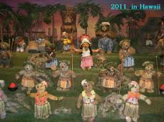 hawaii8_convert_20120102220352.jpg