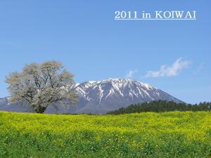 koiwai_convert_20111229232220.jpg