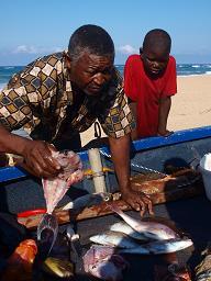 P5096633漁師
