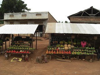 uganda (19)