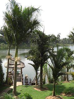 uganda (22)