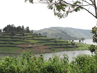 uganda (24)