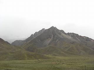 inka (34)