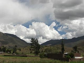 inka (50)
