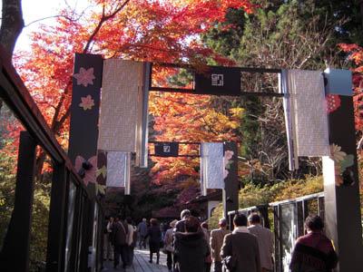 ishiyama5.jpg
