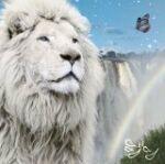 雷音 (ライオン) / ジン