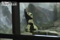 zoo_break.jpg