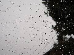 rain...jpg