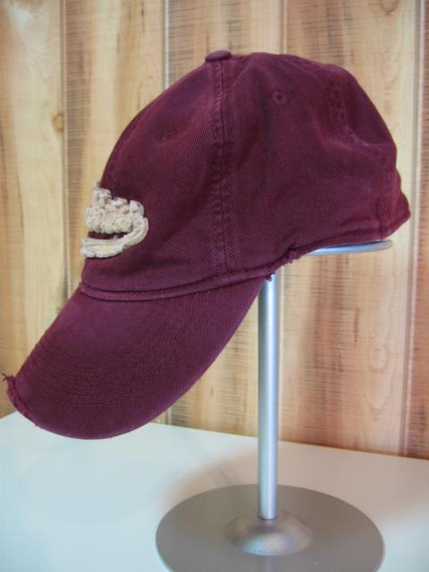 ホリスター 帽子