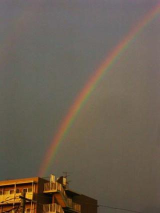 rainbow0006.jpg