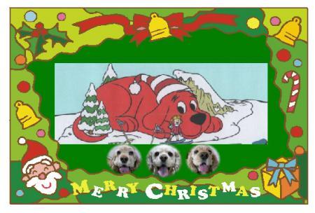 081216クリスマスカード