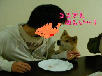 2DuNNg4g.jpg