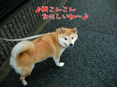 Ii_FbcXQ.jpg