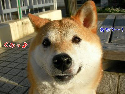 kdV2YyLV.jpg