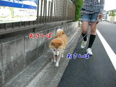 wQISOlNx.jpg