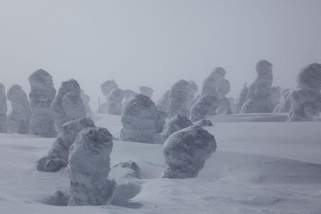 小ぶりな樹氷