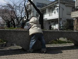 20060331_4.jpg
