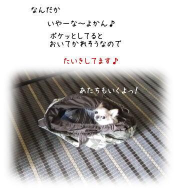 200103062.jpg