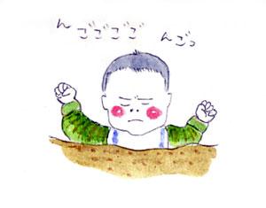 hanamizu1