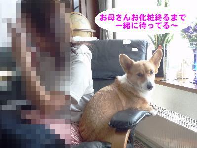 dc092101(修整1)(1)(1)