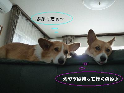 dc102527(修整1)(1)(1)