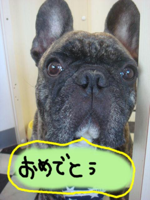 DSC04147blog.jpg
