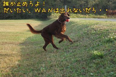 Qwr2_e0g.jpg
