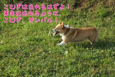 TTXFEy_u.jpg