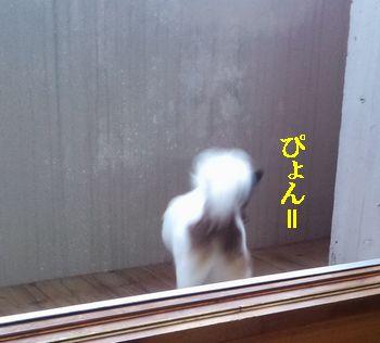 CA3H0175.jpg