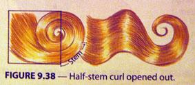 Half-stem-curl.jpg