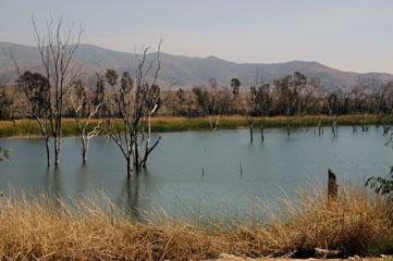 Otey-Lake.jpg