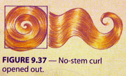 no-stem-curl.jpg
