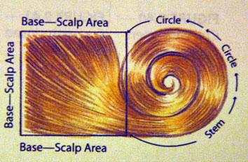 pin-curl.jpg