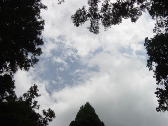 09年7月京都 080
