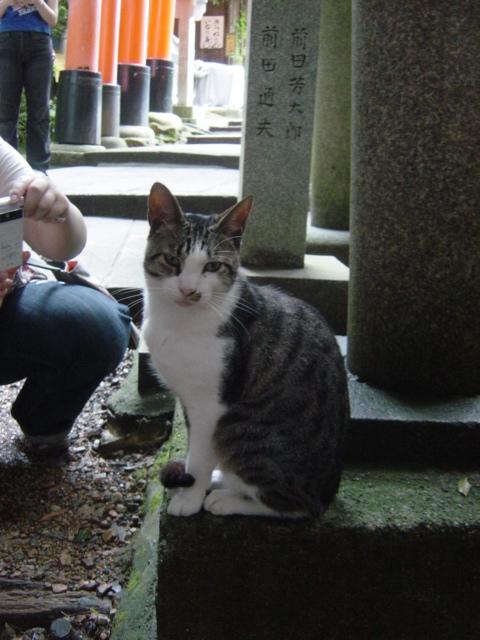09年7月京都 373