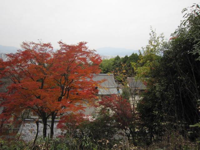 京都旅行09年11月24~27日 015