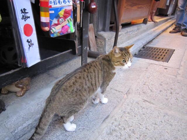 京都旅行09年11月24~27日 032