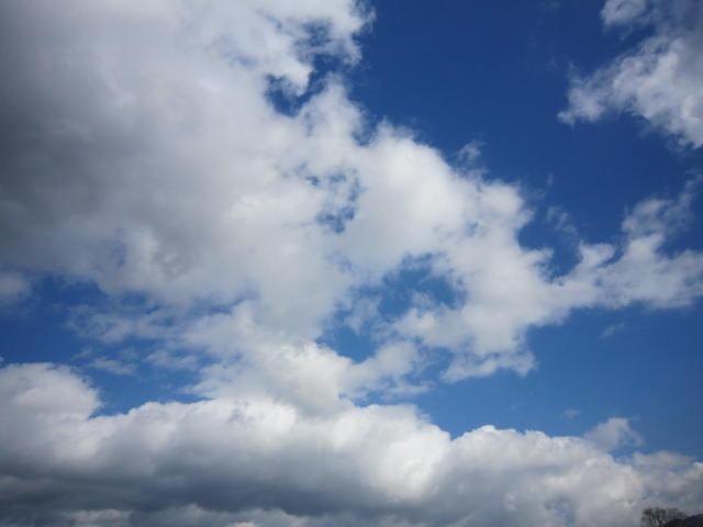 京都旅行09年11月24~27日 114