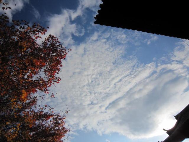 京都旅行09年11月24~27日 205