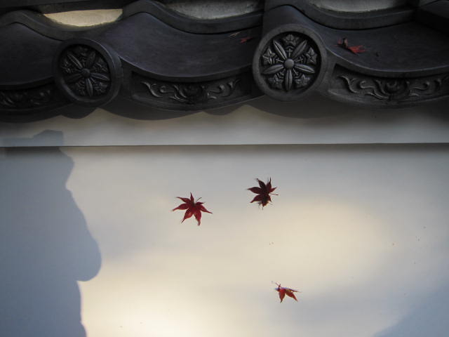京都旅行09年11月24~27日 240