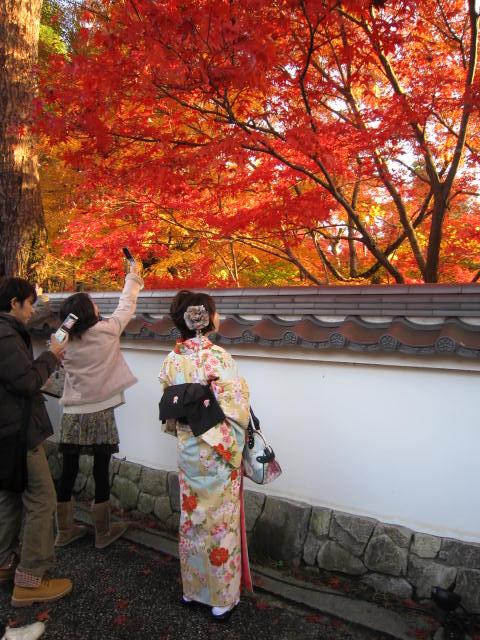 京都旅行09年11月24~27日 247