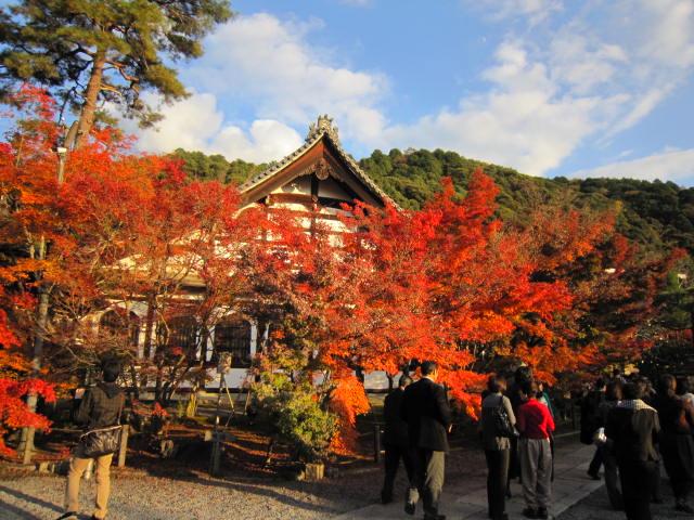 京都旅行09年11月24~27日 252