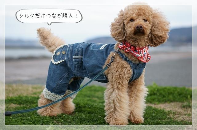 おにゅ~の服06