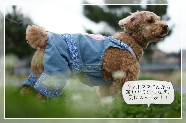 おにゅ~の服04