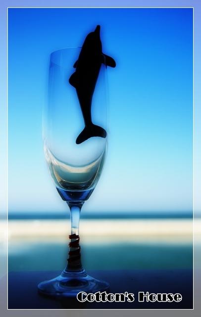 グラスの中の海04